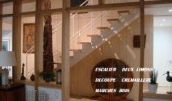 Escalier marche bois rampe acier